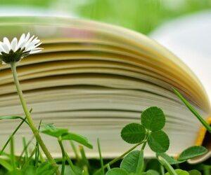 La educación como inicio del camino hacia una economía circular